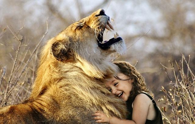 photoshop montage lion enfant